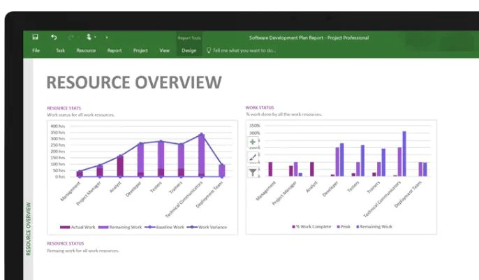 Microsoft Project Resource Overview