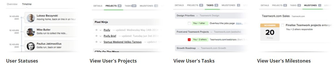 Teamwork Projects user tasks and projects