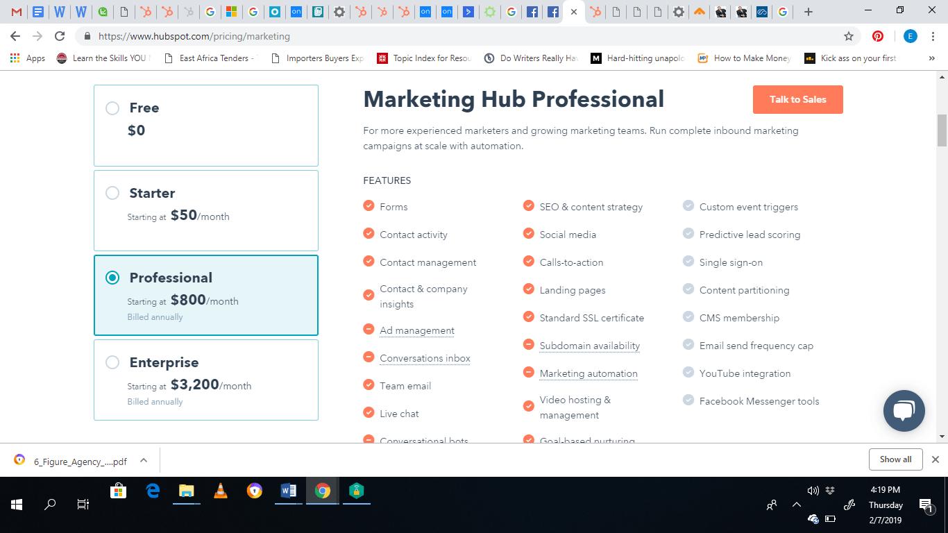 marketing hub professional