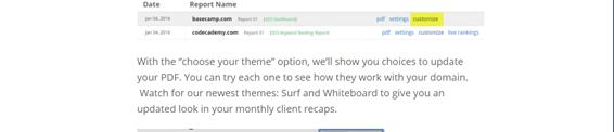 spyfu custom reports